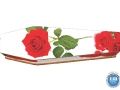 redroses01_page_2
