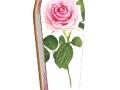 pinkroses01_page_2